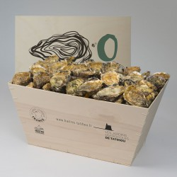 No.0 Oysters