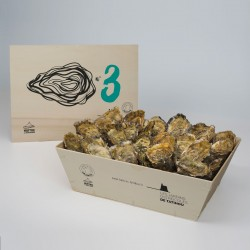 No. 3 Oysters