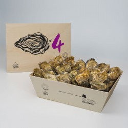 No. 4 Oysters
